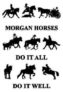 Banners : Vermont Morgan Horse Association